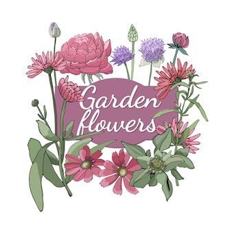 Set floreale estate ed i fiori e le erbe del giardino isolati primavera con gaillardia, peonia, dragoncello, erba cipollina, calendula.