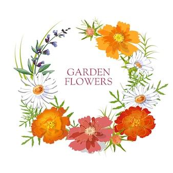 Set floreale l'estate e la primavera hanno isolato i fiori del giardino con la camomilla, i tagetes, la salvia, il tagete.