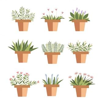 Set flower pot succulento stile schizzo.