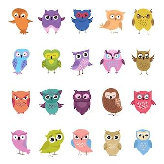Set gufi carino dei cartoni animati. collezione di uccelli divertenti e arrabbiati