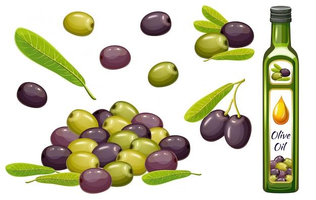 Set olio d'oliva, raccolta e foglia.