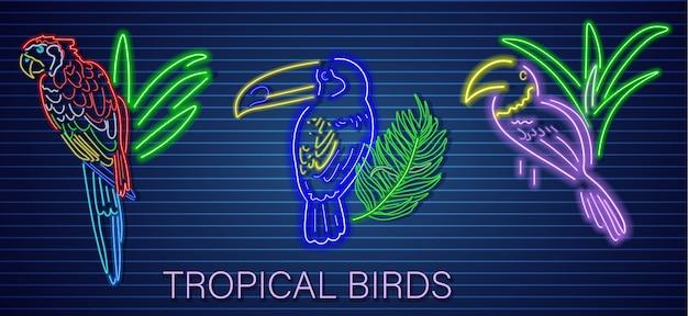 Set pappagallo tropicale al neon