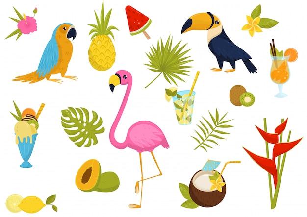 Set piatto di elementi tropicali. splendidi uccelli, gustosi cocktail e frutta, gelati, fiori e foglie di palme