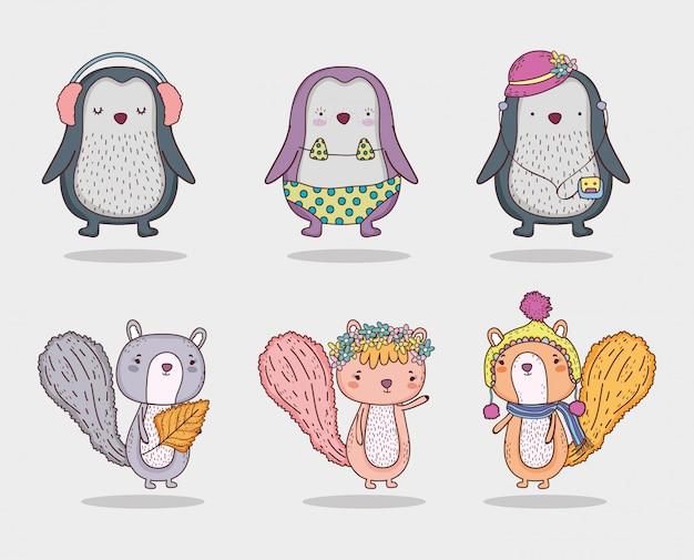Set pinguino e scoiattolo animale carino con cappello