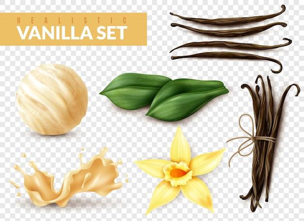 Set realistico alla vaniglia