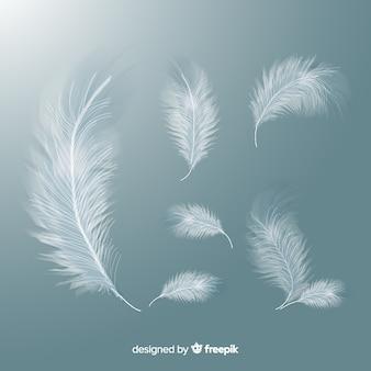 Set realistico di piume bianche