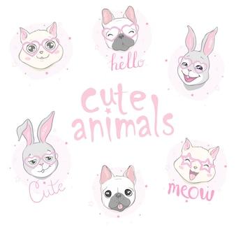 Set testa di gatto e cane
