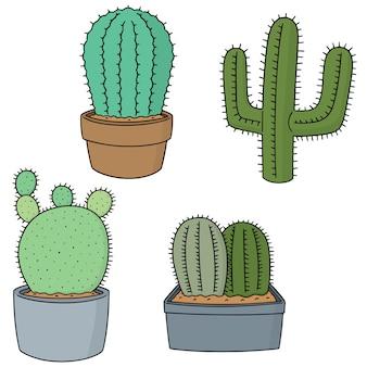 Set vettoriale di cactus