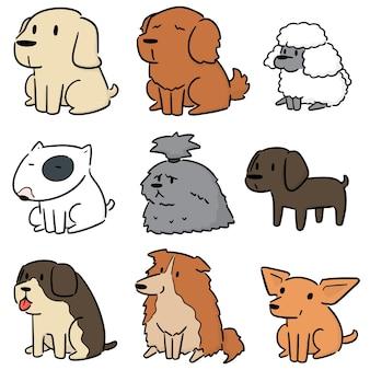 Set vettoriale di cane