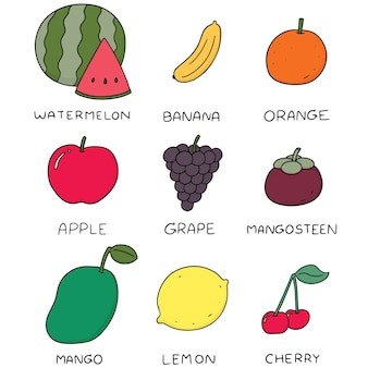 Set vettoriale di frutti