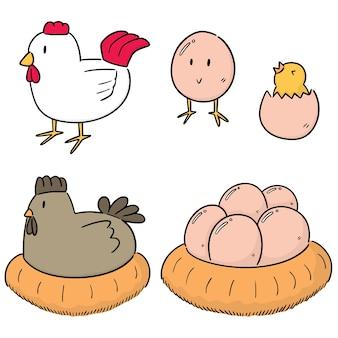 Set vettoriale di pollo e uova