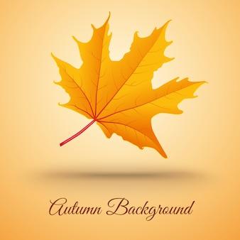 Sfondo astratto con foglia d'autunno