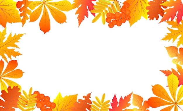 Sfondo autunno con foglie che cadono e bacche di sorbo.