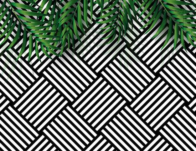 Sfondo bianco e nero tropicale palma naturale. illustrazione vettoriale