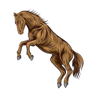 Sfondo bianco isolato illustrazione di cavallo