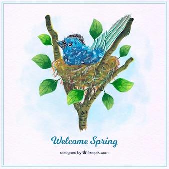 Sfondo blu uccello in un nido acquerello