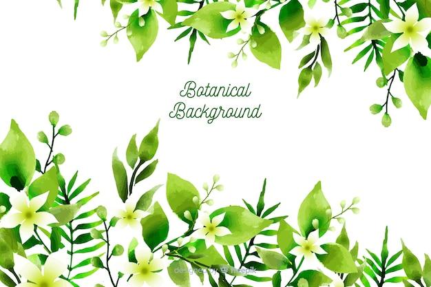 Sfondo botanico