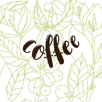Sfondo con disegno floreale con testo di caffè. chicchi di caffè e foglie sfondo bianco.