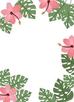Sfondo con fiori e foglie d'estate