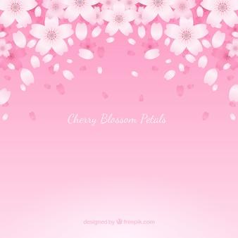 Sfondo con petali di fiori di ciliegio