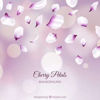 Sfondo con petali di sakura