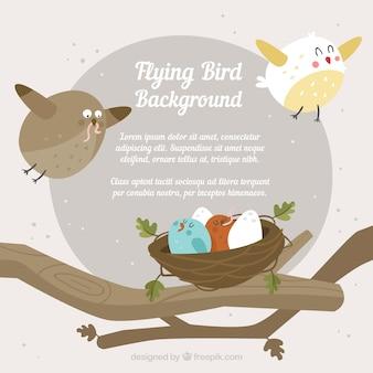 Sfondo con uccelli e nido