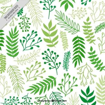 Sfondo decorativo di mano disegnato foglie verdi