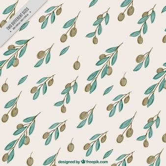 Sfondo decorativo di olive e foglie acquerello