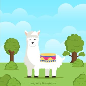 Sfondo di alpaca in natura