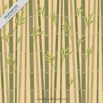 Sfondo di bambù, stile piatto