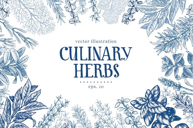 Sfondo di erbe e spezie culinarie disegnate a mano