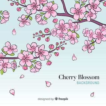 Sfondo di fiori di ciliegio disegnati a mano