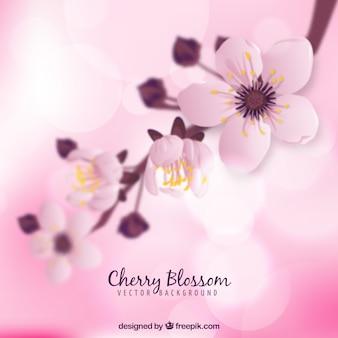 Sfondo di fiori di ciliegio in stile sfocato