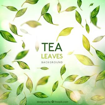 Sfondo di foglie di tè realistico