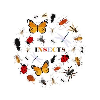 Sfondo di insetti piatti