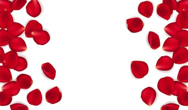 Sfondo di petali di rose rosse