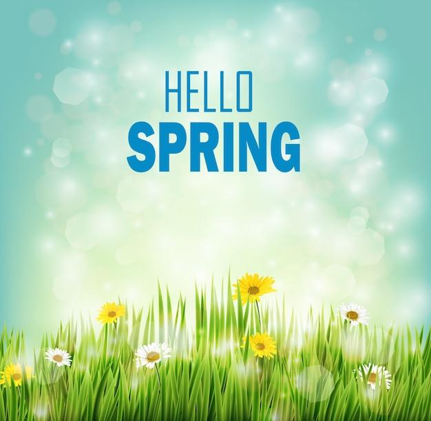 Sfondo di primavera con fiori margherite in erba