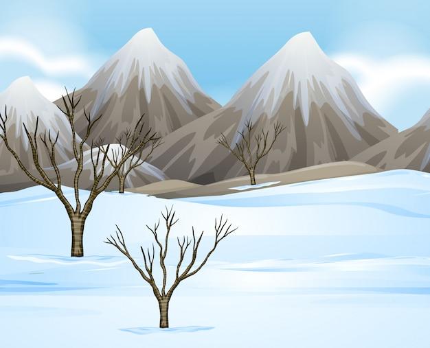 Sfondo di scena di natura con neve sul terreno