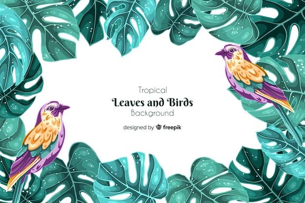 Sfondo di uccelli tropicali