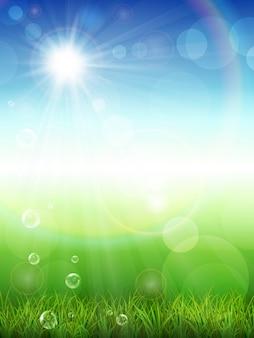 Sfondo estate con erba verde