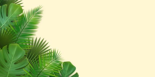 Sfondo estivo con foglie tropicali di palme e monstera