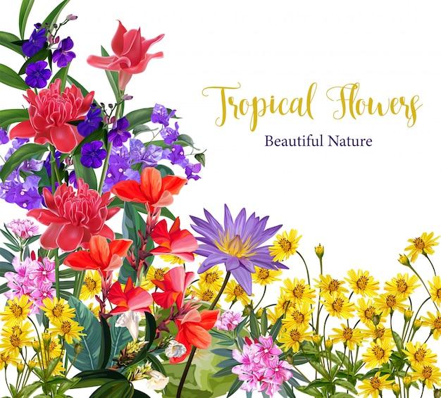 Sfondo fiore tropicale