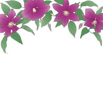Sfondo floreale con fiori di clematide.