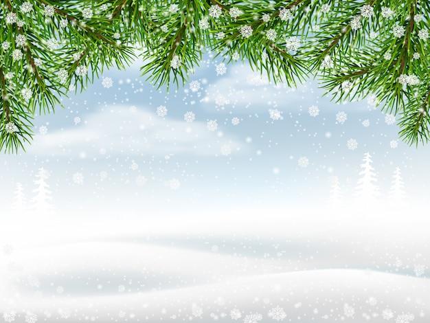 Sfondo invernale con rami di pino