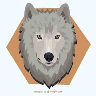 Sfondo lupo con gli occhi gialli e esagono