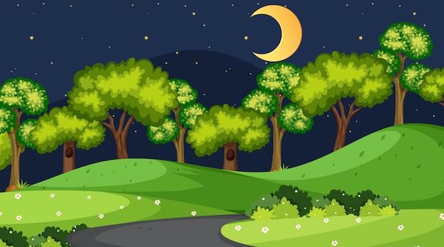 Sfondo paesaggio del parco di notte