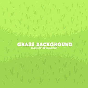 Sfondo piatto di erba verde