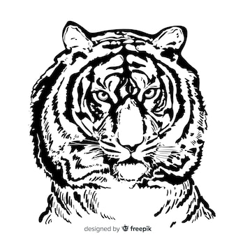 Sfondo ritratto di tigre