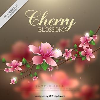 Sfondo sfocato di fiori di ciliegio in stile realistico