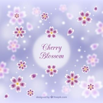 Sfondo sfocato fiore di ciliegio